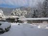 il-parco-dinverno